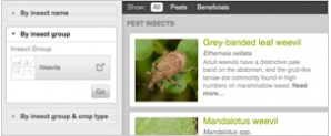 Feature Image Insect Search2